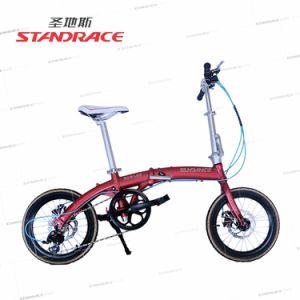 High Quality Disc Brake Bike with Alloy Frame