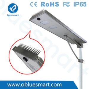 Bluesmart 80W Solar Panel Outdoor Integrated LED Street Garden Light with Bird-Preventing Thorn pictures & photos