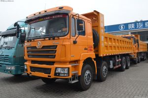 Shacman F3000 8X4 Dump Truck, 12 Wheel Tipper Truck pictures & photos
