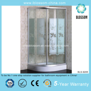 Satin Finish Aluminum Profile Bathroom Simple Shower Room (BLS-9205) pictures & photos