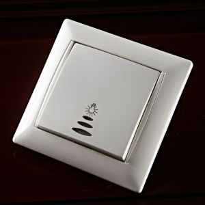 Light Switch with Printing, 10A/250V pictures & photos