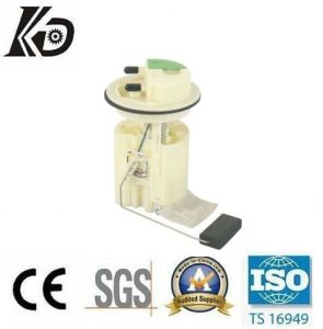 Fuel Pump Module for Peugeot (KD-A247) pictures & photos