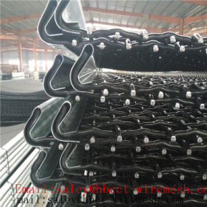 Crimped Wire Mesh with Hook pictures & photos