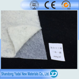 HDPE LDPE Geocomposite Geomembrane for Fish Pond/Domestic Waste Landfill pictures & photos