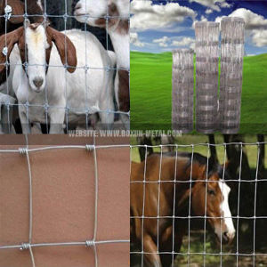 High Tensile Metal Livestock Farm Field Fence pictures & photos