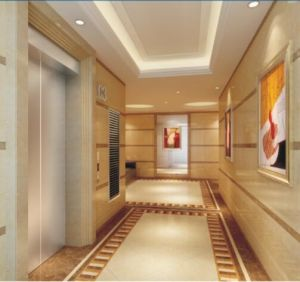 Golden Luxury Decoration Gearless Traction Passenger Elevator with Small Machine Room (RLS-211) pictures & photos