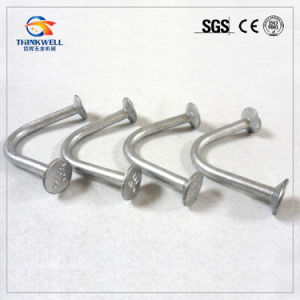High Quality Factory Price Galvanized Ring Lift Anchor pictures & photos