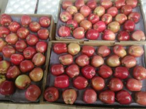 Huaniu Apple Wtih High Quality 88-198 pictures & photos