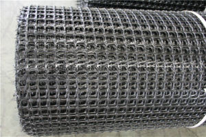 PP Geogrid for Strengthening of Embankments pictures & photos