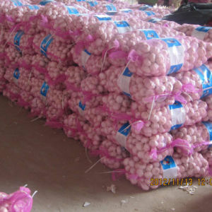 New Crop Fresh White Garlic at Wholesale Price pictures & photos