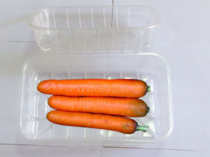 Made in China Biodegradable Clear Plastic Vegetable Packaging Box for Food Storage pictures & photos