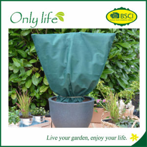 Onlylife UV Resisitant Cold Protection Garden Super Large Plant Cover pictures & photos