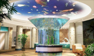 Customized Irregular Acrylic Fish Tank for Ornamental pictures & photos