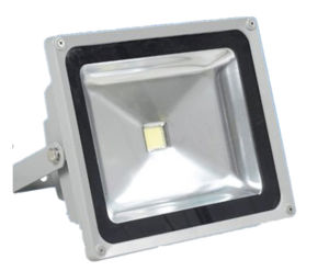 50W Floodlight with CE RoHS (YC-FGD-50)