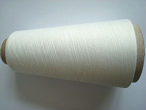 Recycled Polyester Tencel G100 Blenched Yarn-Ne60s/1 pictures & photos