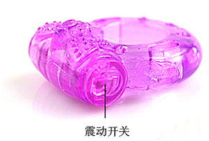 The Supplier Supply Vibrator for Men Penis pictures & photos