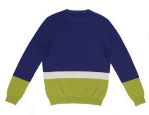 100%Cashmere Winter Round Neck Knitting Men Jumper Sweater pictures & photos