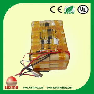 48V 20ah LiFePO4 Battery Pack for Bike Escooter pictures & photos