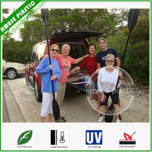 Multiplayers Canoe for Family Sea View Enjoy Clear Fishing Kayaks pictures & photos
