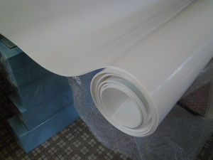 Food Grade Expand PTFE Sheet, Expand Teflon Sheet Use in Food, Pharmaceutical, Chemical, Aerospace, Shipbuilding and Other Industries pictures & photos
