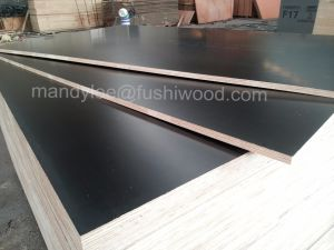 F17/F14 Formwork Plywood for Construction pictures & photos