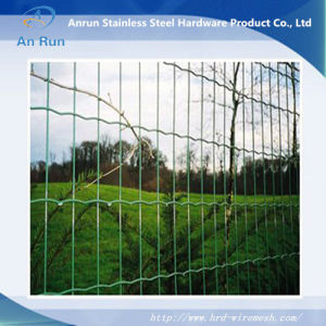 Welded Holland Wire Mesh Fence pictures & photos