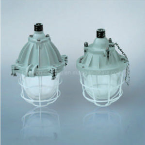 IP66 Aluminum Explosion Proof Lighting with Atex pictures & photos