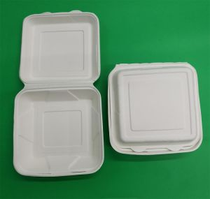 Biodegradable, Eco-Friendly Sugarcane Bagasse Take Away Paper Clamshell 9 Inch pictures & photos