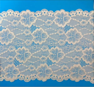 Tricot Lace for Underwear (59A29) pictures & photos