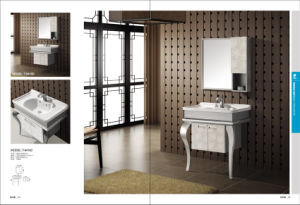 2015 New Stainless Steel Bathroom Furniture (T-9416C) pictures & photos