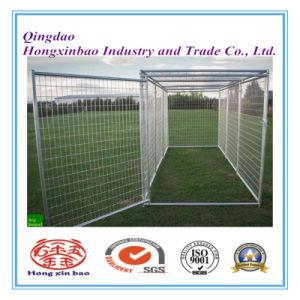 "4""*5""*6"" Outdoor Powdering Coated/Galvanized Weld Wire Mesh Dog Kennel/Dog Cage pictures & photos"