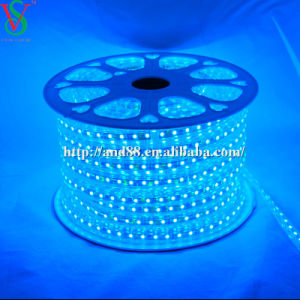 SMD5050 Blue Strip Rope Light pictures & photos