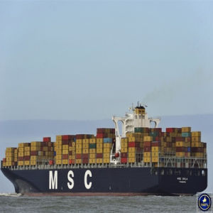 20′ Shipping Container From Shenzhen to La by Msc pictures & photos