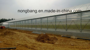 The Cheapest China XL Agricultural, Commercial Plastic Greenhouse pictures & photos