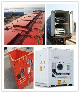 Special Consolidate Shipping Container Services From China to UK pictures & photos