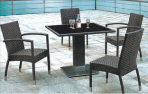 Patio Garden Rattan Table and Chair (BZ-D025)