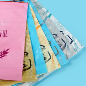 LDPE Printed Ziplock Plastic Bags for Garments (FLZ-9221) pictures & photos