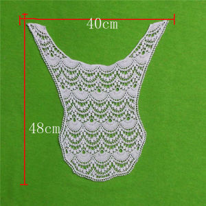 Wholesale Chemical Embroidry Cotton Lace Collar (cn138) pictures & photos