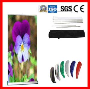 Roll up Banner for Indoor/Outdoor Display pictures & photos
