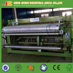 1/4 Inch Galvanized Welded Wire Mesh Roll for Us Market pictures & photos
