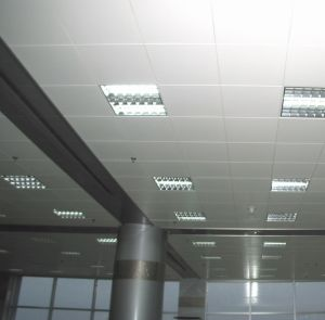 Aluminum Ceiling Board (TLD-001)