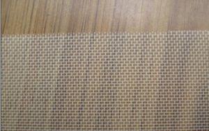 100% Nylon Monofilament Mesh (TYC-NY-95) pictures & photos