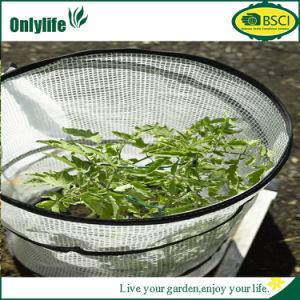 Onlylife Durable PE PVC Garden Greenhouse Mini Greenhouse pictures & photos