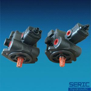 Variable Displacement Vane Pump Vp 20 Hydraulic Oil Pump pictures & photos