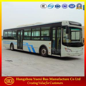 6 - 10 Meter City Bus