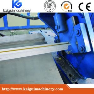 China Manufacturer Fully Automatic T Bar Machinery pictures & photos