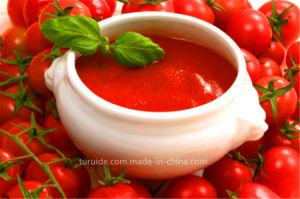 Good Tomato Paste 28-30%