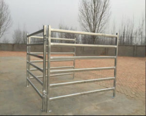 Australia 1800mmx2100mm Oval Rail Horse Corral Panel/Cattle Corral Panel pictures & photos