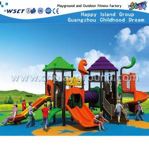 Children Outdoor Playground Amusement Park Slide Equipment Hc-Tsg008 pictures & photos