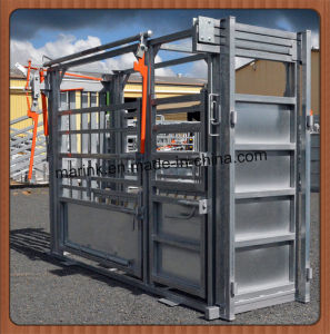 Popular in USA Cattle Squeeze Chute pictures & photos